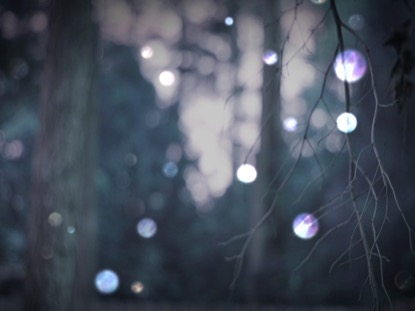 WINTER BOKEH 3