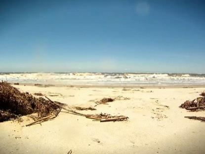 BEACH MOTION 1
