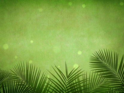 PALM SUNDAY GRUNGE GREEN