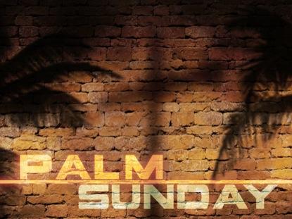 PALM SUNDAY SHADOW WALL