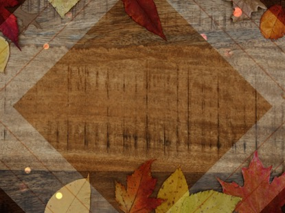 RUSTIC WOOD AUTUMN LEAVES BRIGHT