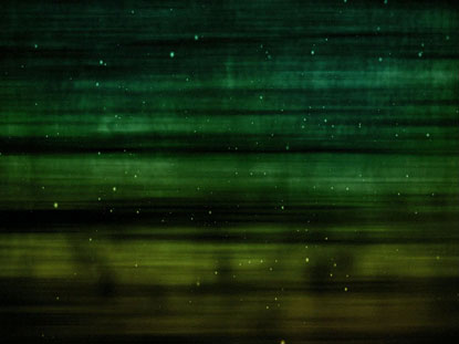 GREEN GOLD PARTICLE STREAKS