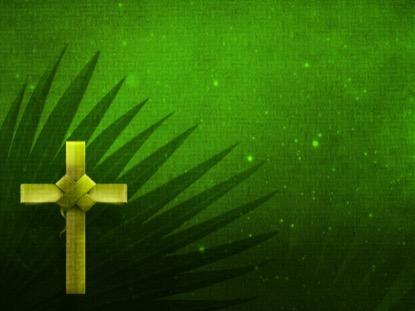 HOLY PALMS MOTION 2