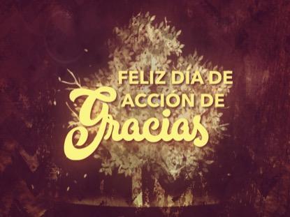 THANKSGIVING GRATITUDE HOLIDAY 2 MOTION - SPANISH