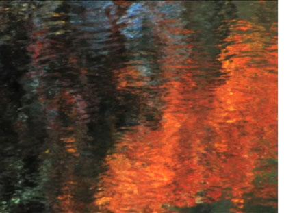 REFLECTION 5