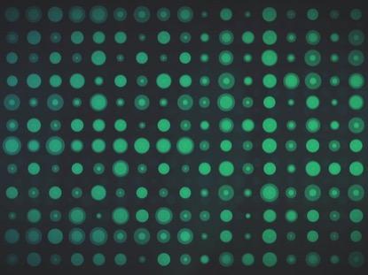 CIRCLE GRID BLUE