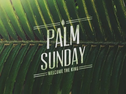 MACRO PALM SUNDAY