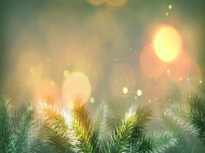 CHRISTMAS VINTAGE FIRS