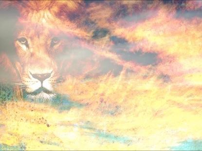 LION WORSHIP MOTION