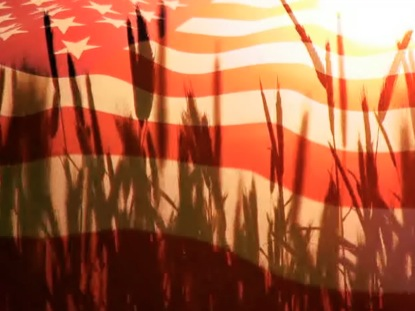 PATRIOTIC MOTION FLAG AND GRASS
