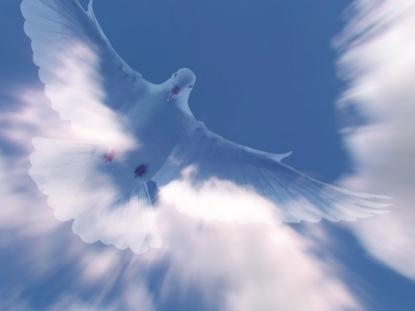 HOLY SPIRIT MOTION 2