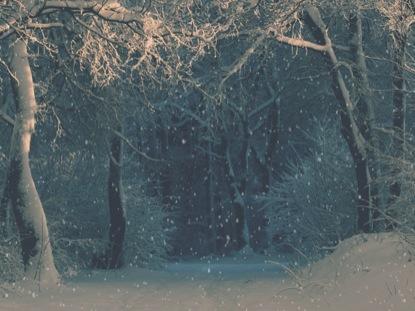 CHRISTMAS RIBBON BLUE SNOW