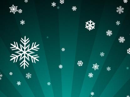 ORNAMENTAL SNOW ON TEAL RADIAL LOOP