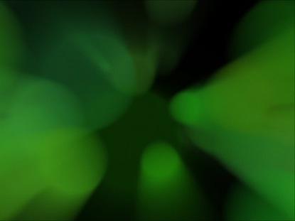 WHIRL LOOP GREEN
