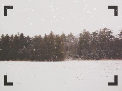 WINTER FOREST FRAME BLANK 1