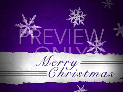 MERRY CHRISTMAS PURPLE SNOWFLAKES