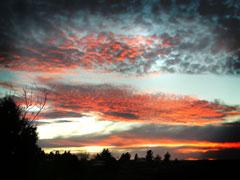 ORANGE SUNSET FALL