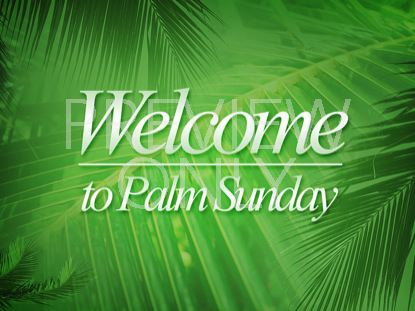 Palm Sunday Palm Branches Sunday Welcome