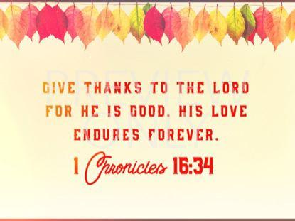 THANKSGIVING 02 SCRIPTURE STILL