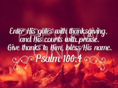 THANKSGIVING 03 SCRIPTURE STILL