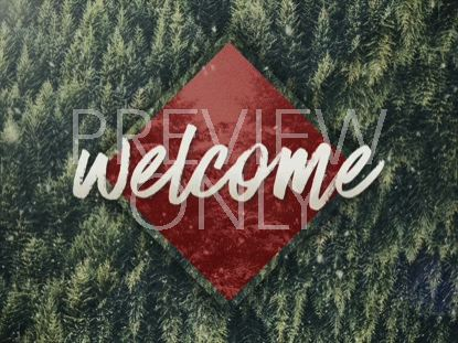 CHRISTMAS FOREST WELCOME STILL