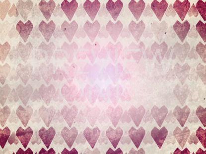 LIVE LOVE STILL 01