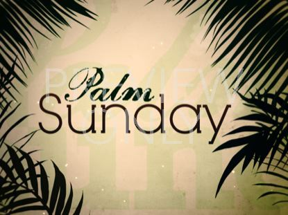PALM SUNDAY STILL