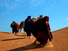 MAGI IN DESERT 8
