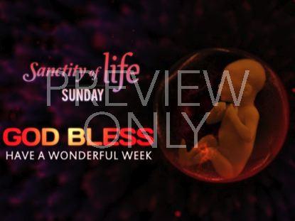 SANCTITY OF LIFE GODBLESS STILL