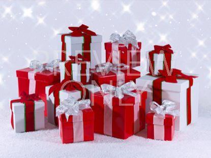 THE TWELVE DAYS OF CHRISTMAS STILLS