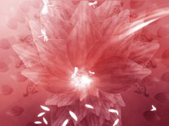 ORGANIC FLOWERS 3