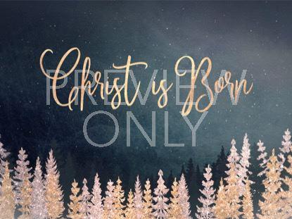 CHRISTMAS SPARKLE CHRIST IS BORN STILL