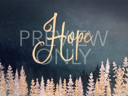 CHRISTMAS SPARKLE HOPE STILL