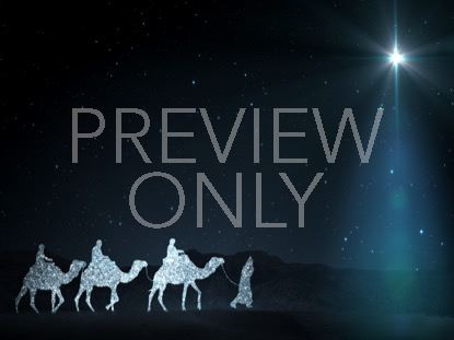 STARLIGHT NATIVITY 4