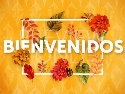 COLORS OF FALL WELCOME STILL - SPANISH