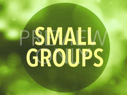 DYNAMIC LIGHTS SMALL GROUP STILL 2