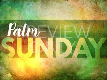 EASTER SUNRISE PALM SUNDAY STILL