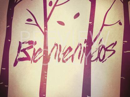 FALL BIRCH TREES WELCOME STILL - SPANISH