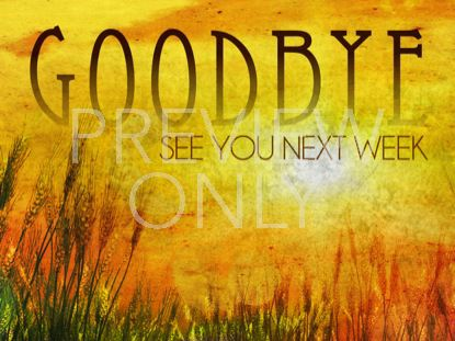 GOLDEN SUN GOODBYE STILL