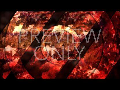 RED LEAVES STILL 2