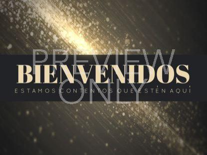 STARDUST WELCOME STILL SPANISH