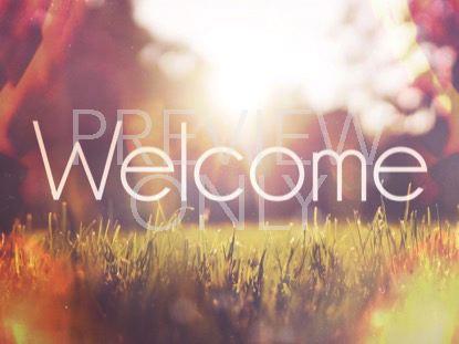 SUNLIT GRASS WELCOME STILL