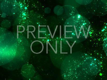 BOKEH GREEN STARS STILL 1