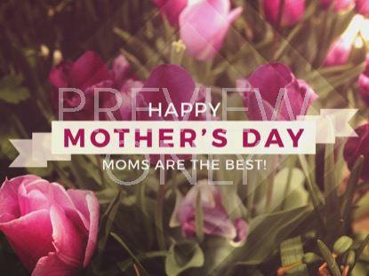 FRESH FLOWERS HAPPY MOTHER'S DAY STILL