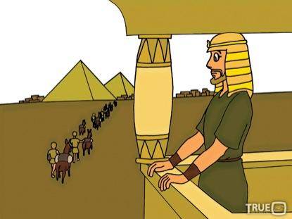 JOSEPH'S DREAMS STILLS