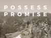 Possess The Promise | Disciple Media | Preaching Today Media