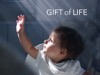 Gift Of Life | Lifeway Media | Preaching Today Media