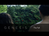 Genesis: The Fall | Ridge Creative | Preaching Today Media
