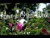 Blossoms Closing | Beau Reve Media | Preaching Today Media