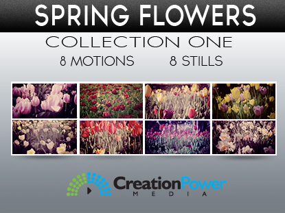 SPRING FLOWER COLLECTION